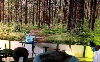 Les Bienfaits Santé de la Forêt en entreprise